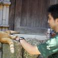 江ノ島の野良猫とビールと僕